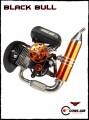 Cors Air BLACK BULL Paramotor