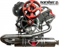 BlackHawk Banshee 190 4 Stroke Paramotor